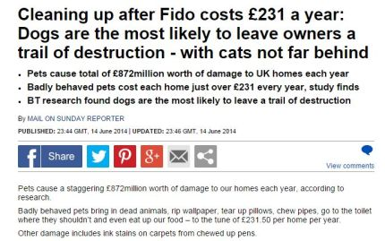 Cleaning-Fido-costs-231-year-Dogs-likely-leave-owners-trail-destruction-cats-not-far-behind