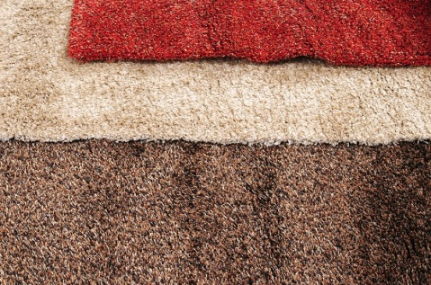 Carpet and Rug